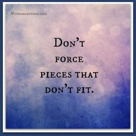 Dont-Force-Pieces-That-Dont-Fit-1